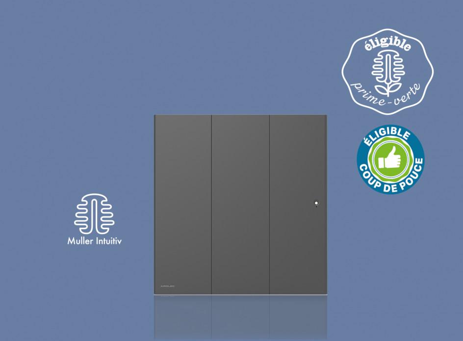 Radiateur Airelec Ozéo Horizontal - Anthracite d'une puissance de 2000 W